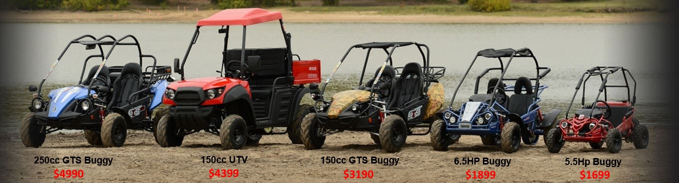 250cc150cc6.5hp5.5hp dune buggy Comparison