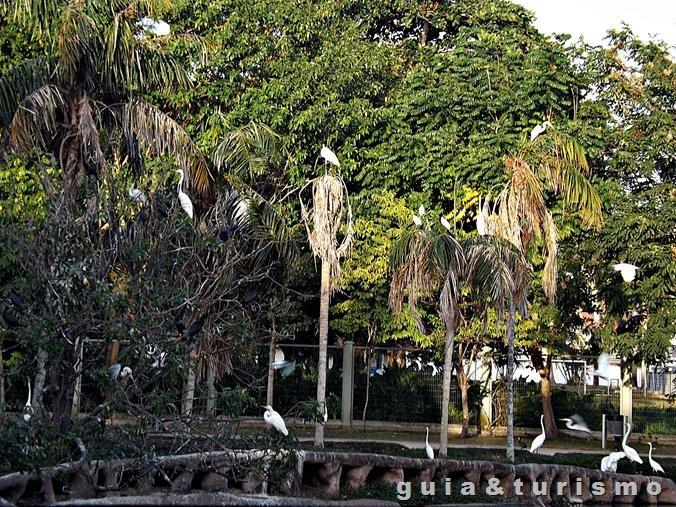 Mangal das Garças em Belém