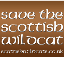 Click here to find out about the Scottish Wildcat