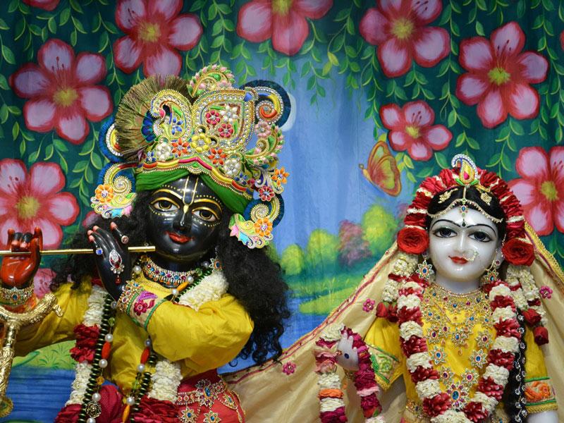 ISKCON Ahmedabad Deity Darshan 02 Mar 2016 (8)