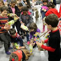 Nadales i Tronc de nadal al local  20-12-14 - IMG_7808.JPG