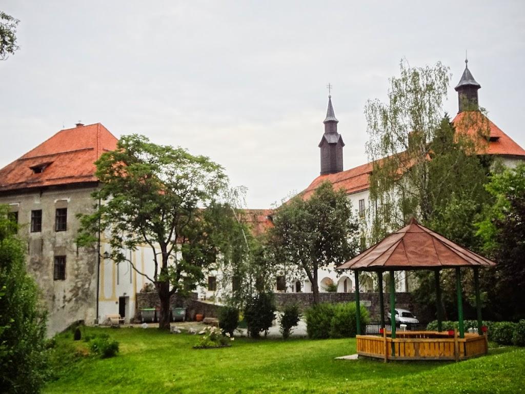 Gauthier in Slovenia - Vika-03843.jpg