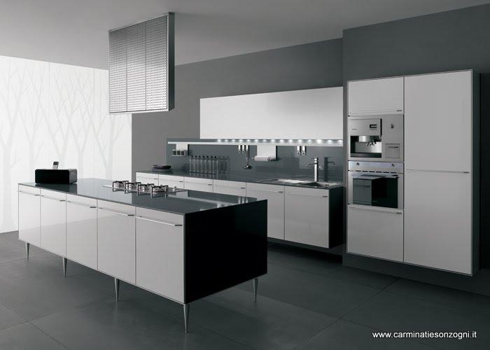 cucina valcucine mod.artematica laminato multiline bianco con isola con piedi e cappa mod isola, piani in vetro temperato .jpg