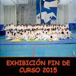 EXHIBICIÓN FIN DE CURSO 2015