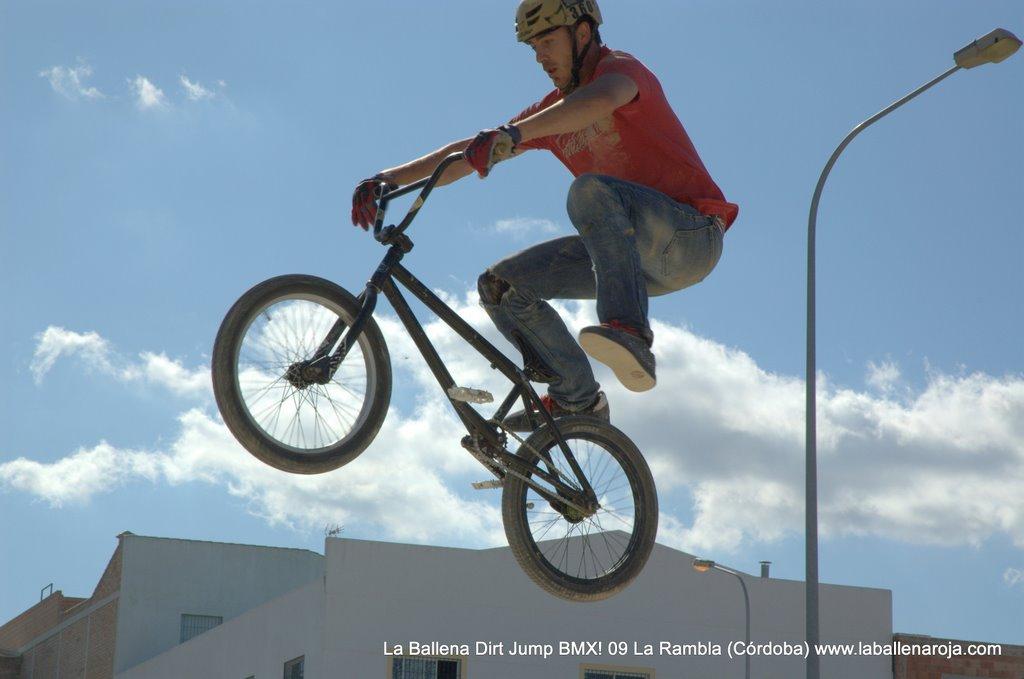Ballena Dirt Jump BMX 2009 - BMX_09_0025.jpg