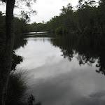 The Wallingat River
