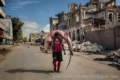 Africa, Somalia, Mogadishu. 10/10/2015. A man carries a huge hammerhead through the streets of Mogadishu. A recent escalation of plunders of Somali waters by foreign fishing vessels could mean the return of hijackings, locals warn..The country's waters have been exploited by illegal fisheries and the economic infrastructure that once provided jobs has been ravaged.
