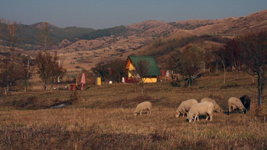 Buzau Berca Paclele Romania