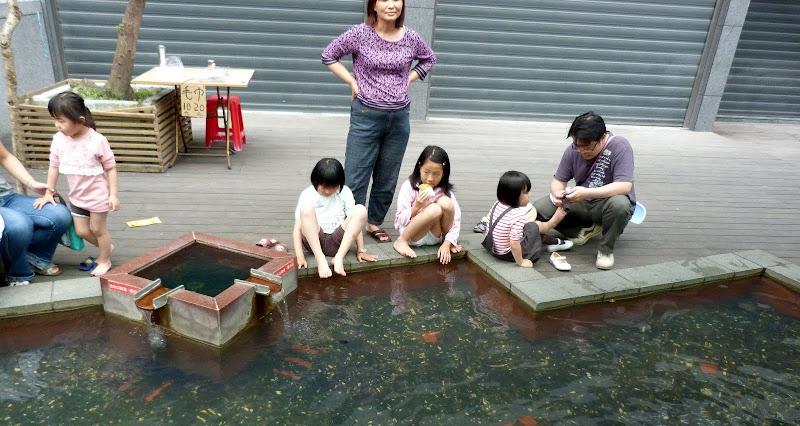 TAIWAN Taoyan county, Jiashi, Daxi, puis retour Taipei - P1260464.JPG