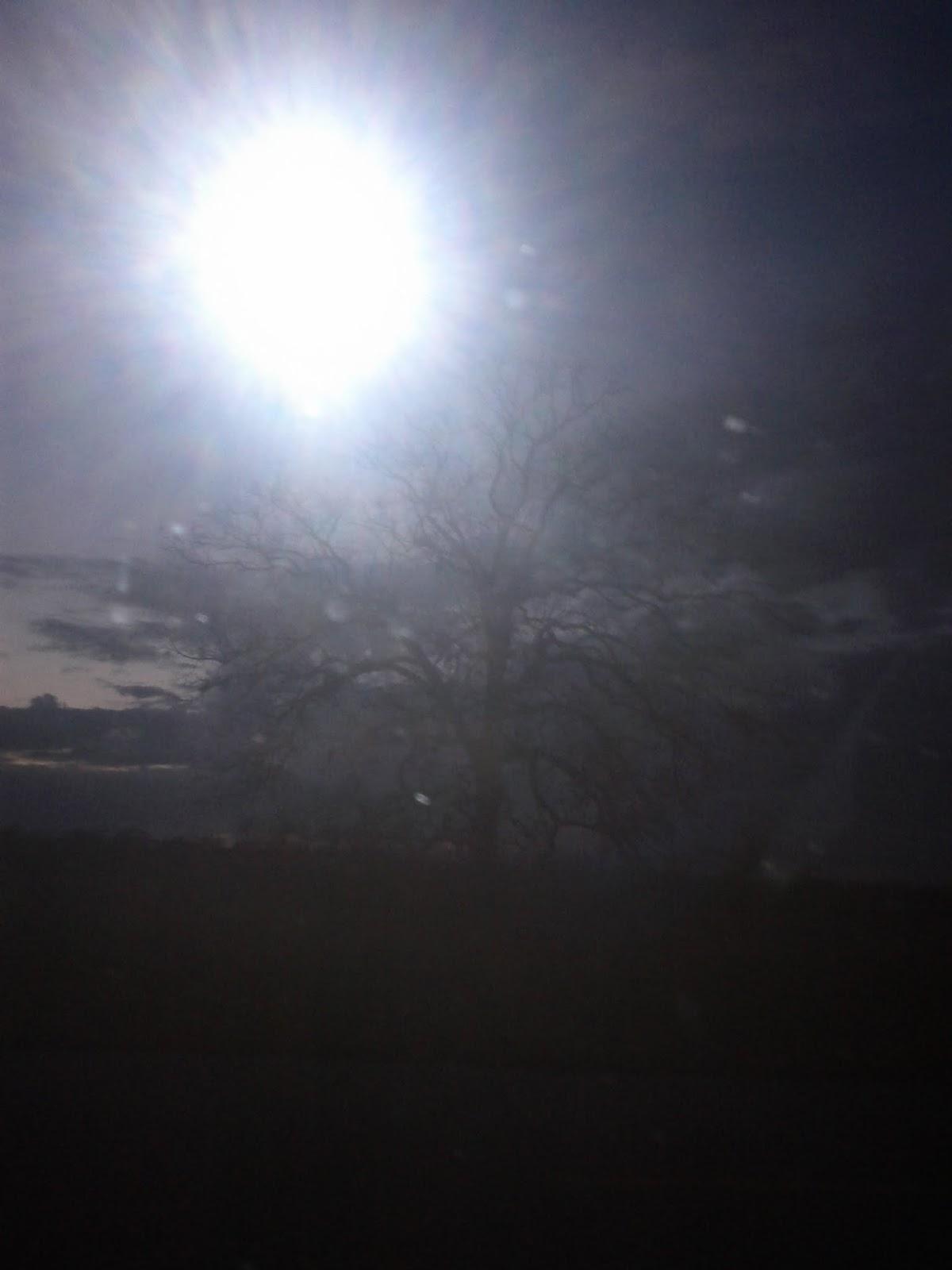 Sky - IMG_20121211_174615.jpg