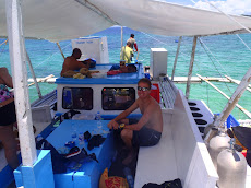 We did one day of diving in Donsol - saw mostly reef and fish and one wreck. Pretty good reef condition here but not many big fish