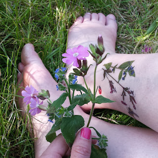 flower bee and ladybird temporary tattoos by Alice Draws The Line