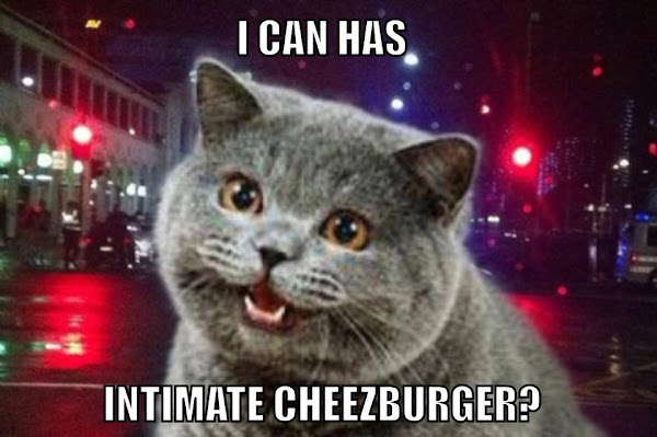 intimate cheezburger