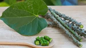 ayurvedic remedies,ayurveda home remedies,ayurvedic home remedies to increase immunity power,home remedy for low immunity ayurvedic ayurveda,ayurvedic,natural remedies,ayurvedic centre,home remedies,ayurvedic consultation,herbal remedies,ayurvedic medical store,ayurvedic treatments,ayurvedic drink,ayurvedic kadha,ayurvedic wisdom,remedies,ayurvedic herbal tea,ayurvedic tea recipe,ayurvedic health tips,ayurvedic immune booster,viral fever home remedies,ayurvedic immunity booster - https://www.24hoursbharat.com/