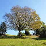 Serra de Milany (21).jpg