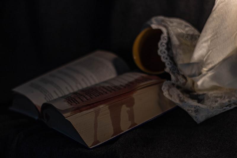 Galeotto fu il libro....... di Fabyfoto