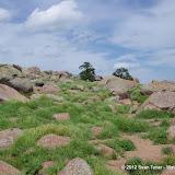 04-19-12 Wichita Mountains N W R - IMGP0465.JPG