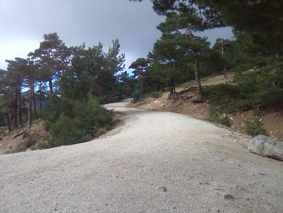 Camino del Infante, desde el Puerto de la Fuenfría al collado de Marichiva