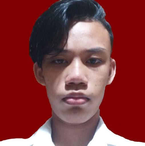 user Mike Largo apkdeer profile image