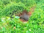Mayat Tak Dikenal Hampir Tinggal Kerangka, Ditemukan di Desa Pandau Jaya Siak Hulu