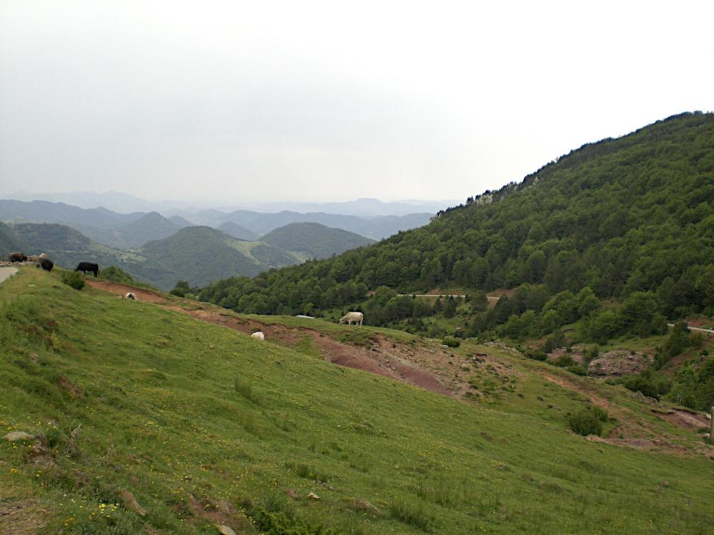 Taga 2006 - CIMG9336.JPG