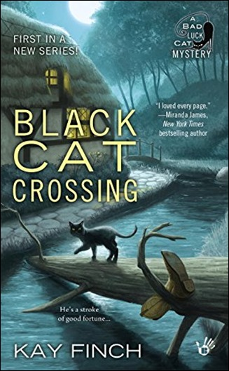 Black Cat Crossing by Kay Finch - Thoughts in Progress