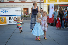 Stadtfest Herzogenburg 2014_ (151)