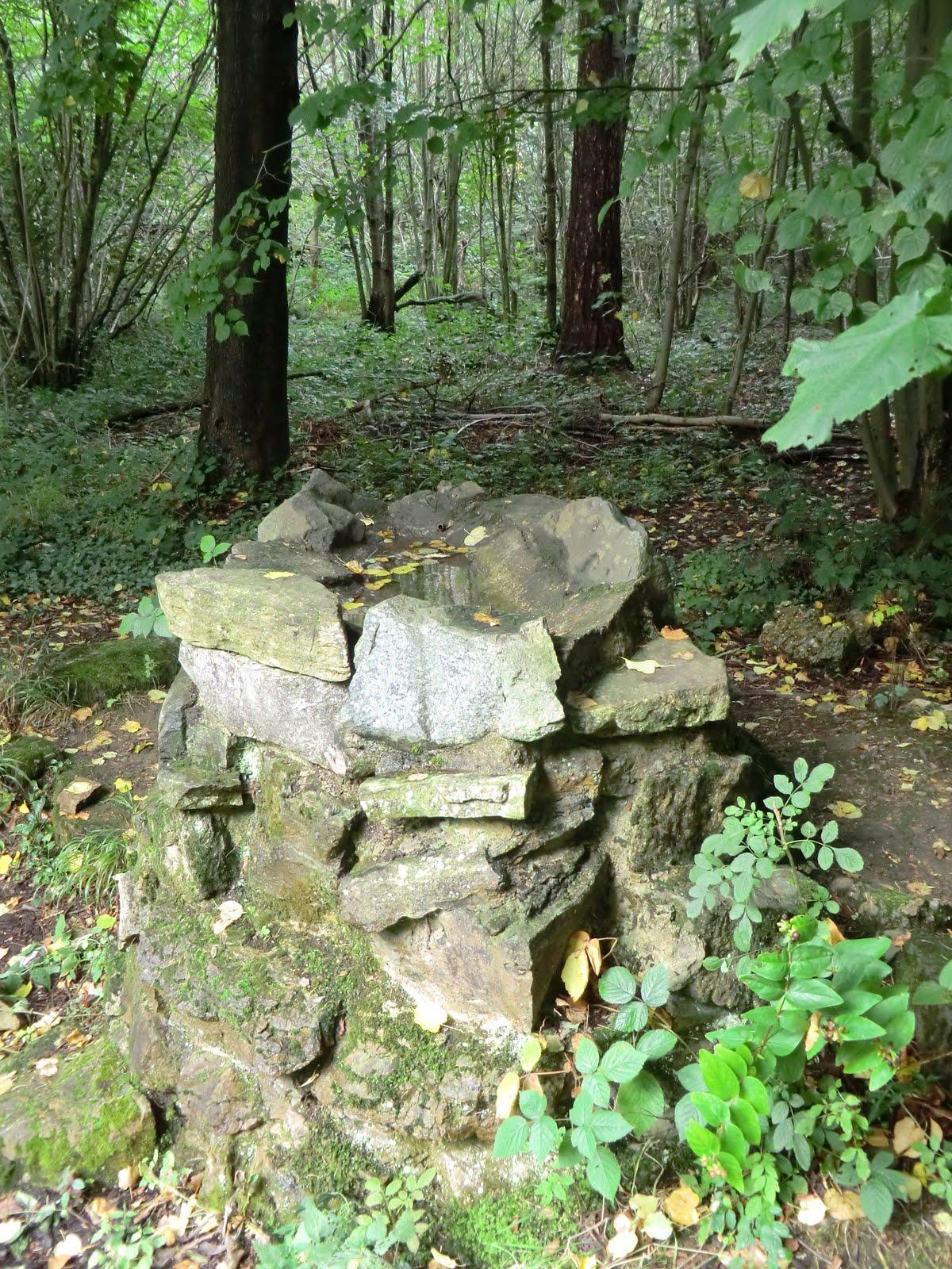 CIMG4287 Cairn, Selsdon Wood