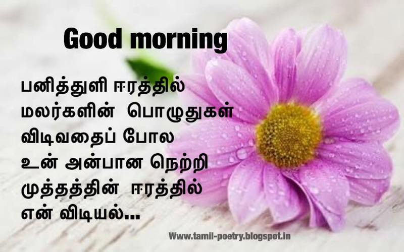 Good Morning Love Kavithai : Good morning kavithaigal tamil kavithai poems