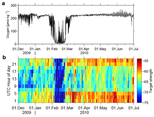 Time series of (a) oxygen at nominal 42m depth and (b) relative target strength between 65 and 70m depth against hours of the day (in dB). Target strength was calculated from the 300kHz acoustic Doppler current profiler data at CVOO. Minimal target strength during all hours of the day is seen during the passage of the low-DO anticyclonic-modewater eddy between 8 and 25 February 2010. Graphic: Karstensen, et al., 2015