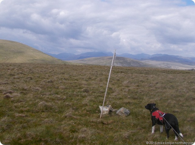 plough fell 009