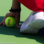 Ambiance - 2016 Dubai Duty Free Tennis Championships -DSC_2791.jpg