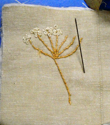 Beginning a besign - An umbellifer