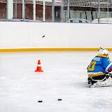 Тренировка хоккейной команды