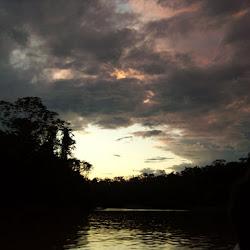 Peruvian Amazon 2006