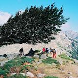 Korsyka 07