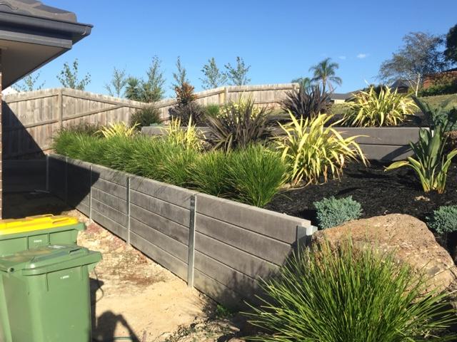 garden, lomandra, lime tuff, phormium, nandina, birds of paradise, landscaping retaining wall
