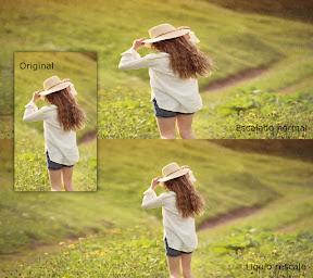 Redimensionar imágenes sin deformar - ejemplo 1