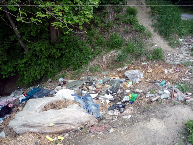 Igienizare si amenajare parcare de la Hula Baznei - 2013 - ecologizare%2Brapa%2BMedias%2B%25283%2529.jpg