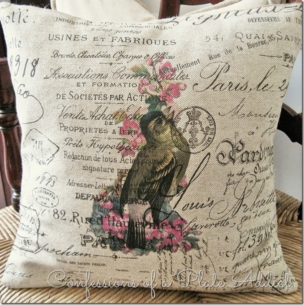 CONFESSIONS OF A PLATE ADDICT French Script Bird Pillow #2