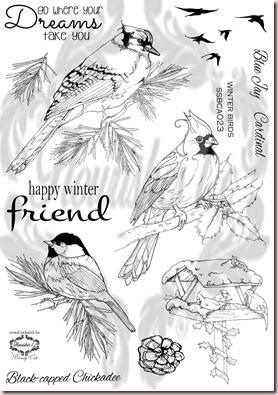winter birds wm