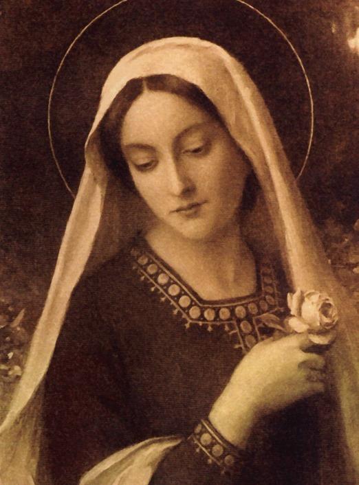 Salve Maria Puríssima, de todas a mais bela
