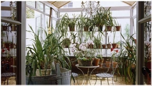 Giardino Dinverno In Casa : Flowerschicarts giardini d inverno