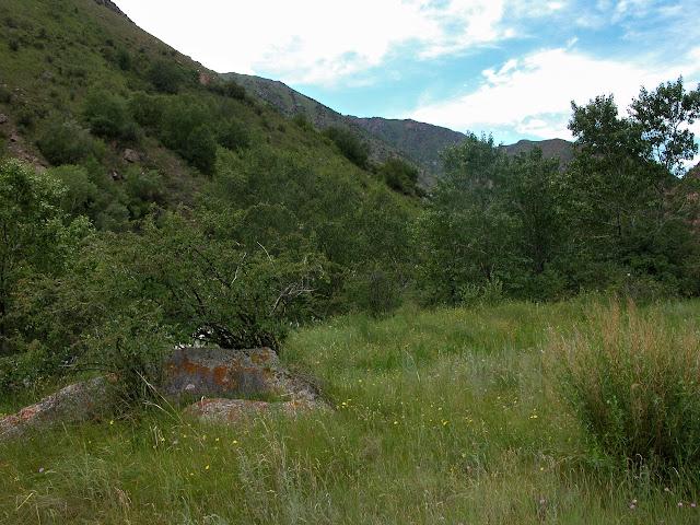 Kekemeren (1900 m), le 1er juillet 2006. Photo : B. Lalanne-Cassou