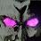 XcalPlays's profile photo