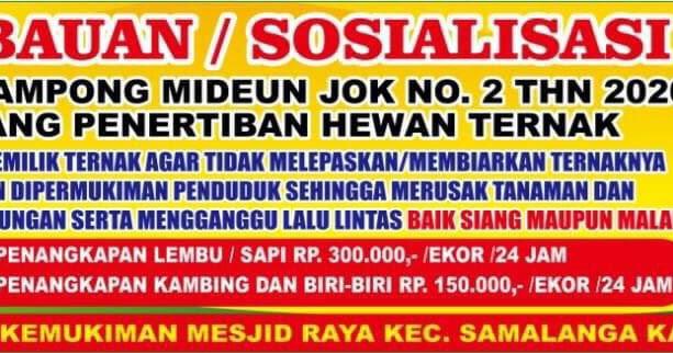 Qanun No 2 Tahun 2020 Mideuen Jok Lepas Ternak Denda 1 X 24 Jam Rp 300 Rupiah Barometer99 Berita Terkini Indonesia