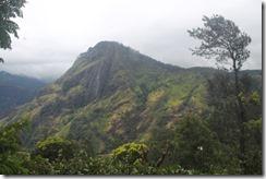 Ланка (920)