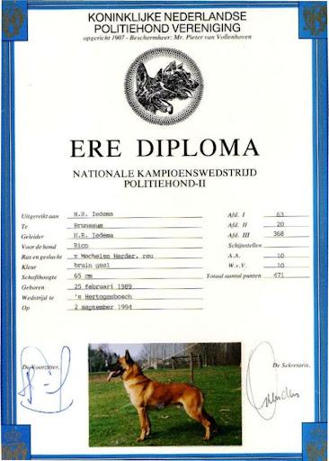 Ere Diploma Rico 3