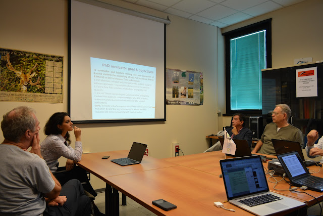 TEMPUS GREENCO meeting in ISTI-CNR - DSC_0637.JPG