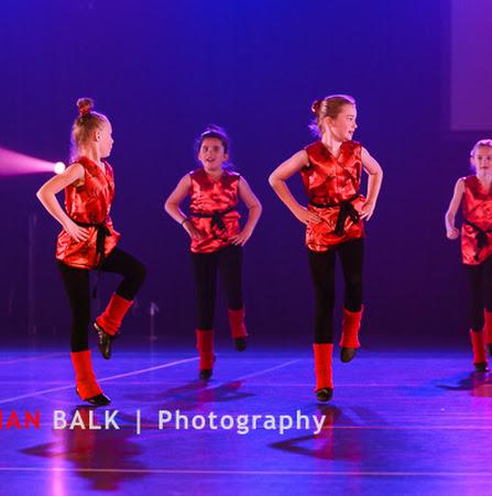 Han Balk Voorster Dansdag 2016-3745.jpg